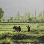 Nubra valley pictures