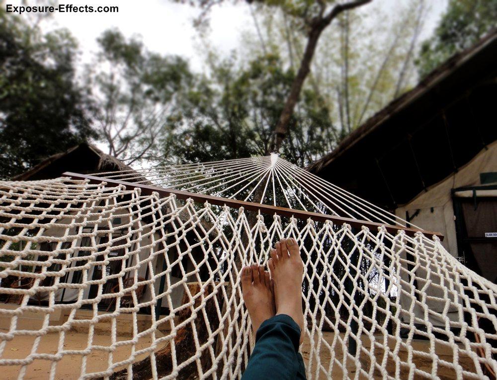 Bannerghatta bangalore jungle lodges and resorts-19