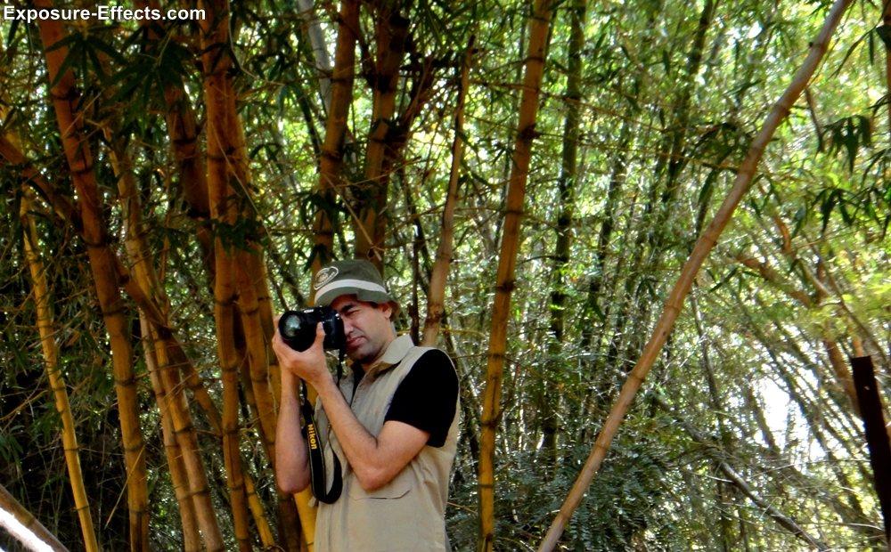 Bannerghatta bangalore jungle lodges and resorts-2