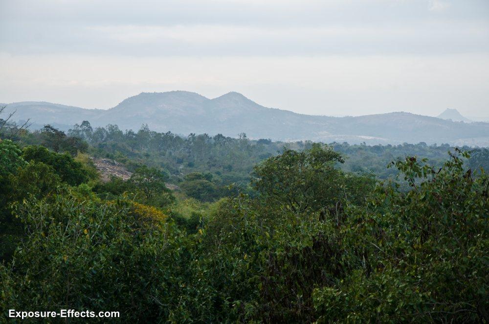 Bannerghatta bangalore jungle lodges and resorts-23