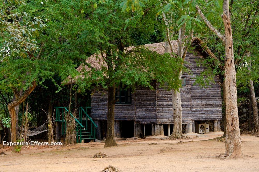 Bannerghatta bangalore jungle lodges and resorts-5-loghuts