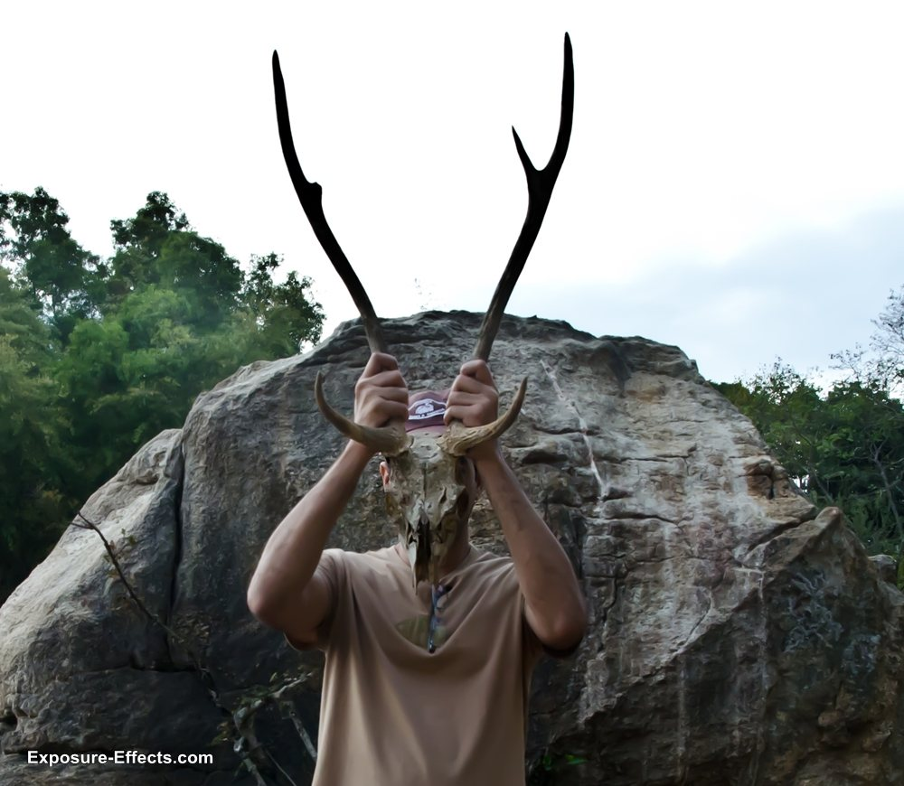 Bannerghatta bangalore jungle lodges and resorts-70