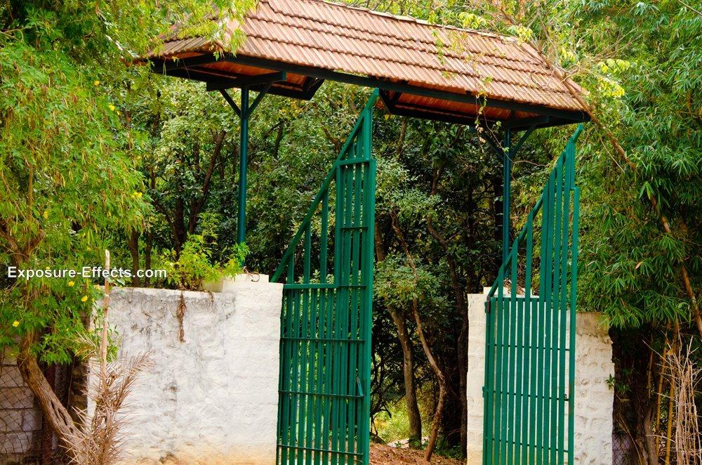 Bannerghatta bangalore jungle lodges and resorts
