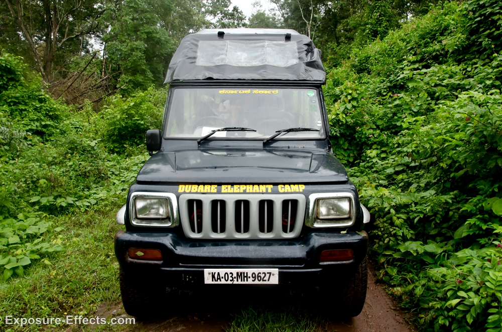 001-Jeep Safari at Dubare Elephant Camp Jungle Lodges and Resorts