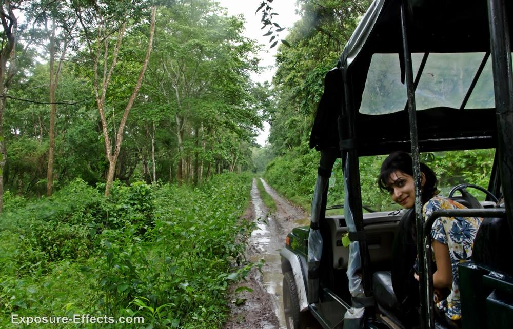 Dubare Forest Jeep Safari Jungle Lodges and Resorts coorg karnataka