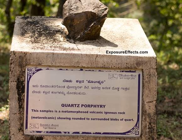 Quartz Porphyry - Rock