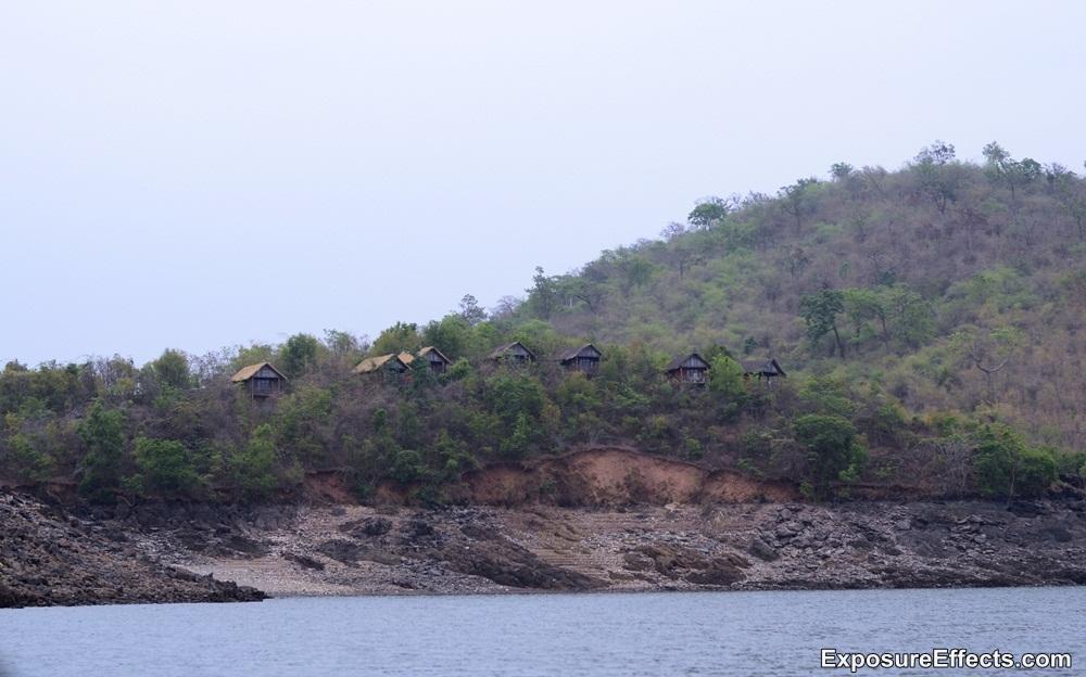 Jungle Lodges and Resorts River Tern Lodges Morning Boat Safari Pics