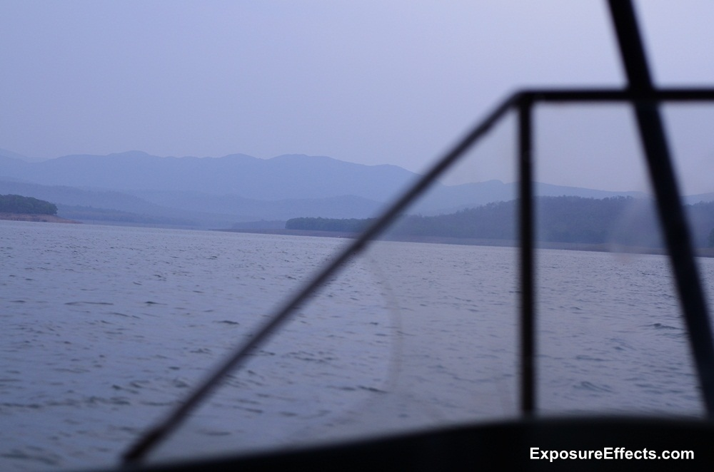Jungle Lodges and Resorts River Tern Lodges Morning Boat Safari Pictures