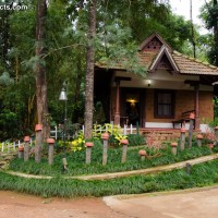 Misty Woods Coorg Resorts Karnataka India - Reception Area
