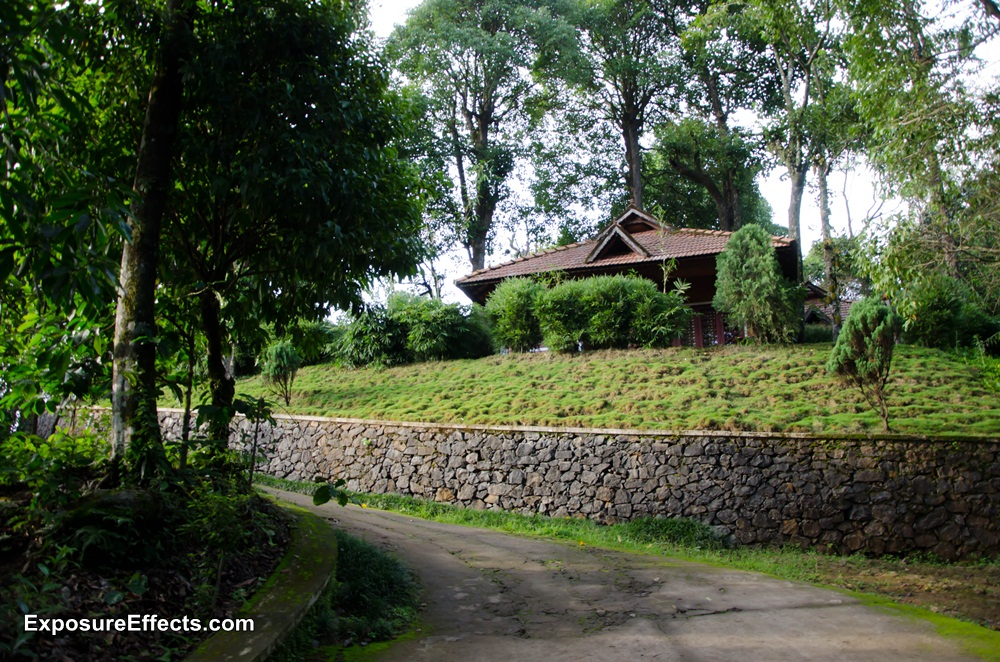 Misty Woods Coorg Resorts Pictures