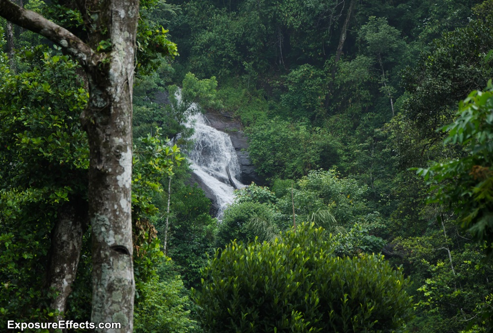 Misty Woods Coorg Resorts Waterfall within the Property