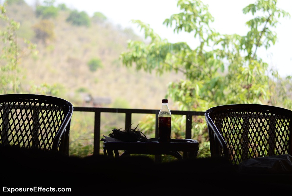 River Tern Lodge - Jungle Lodges Resorts -Cottages View