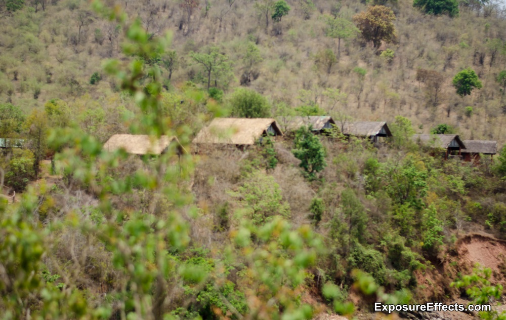 River Tern Lodge - Jungle Lodges Resorts - Rooms - Loghuts