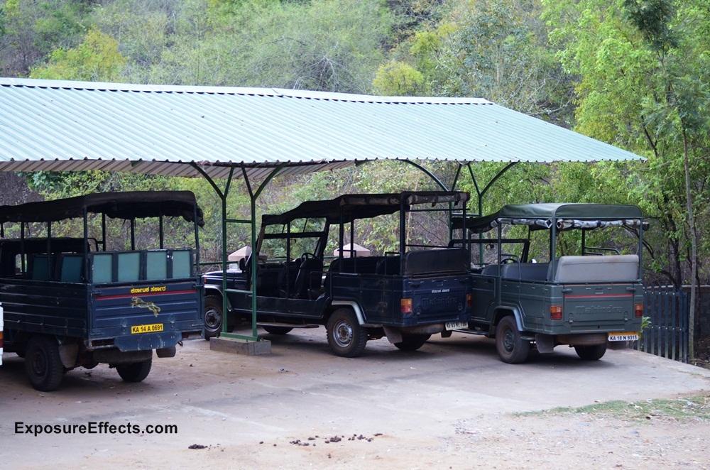 River Tern Lodge - Jungle Lodges Resorts Wildlife Jeep Safari