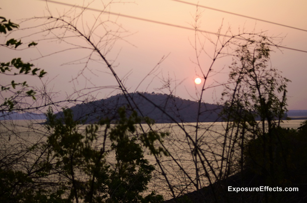 Sunset View Jungle Lodges and Resorts River Tern