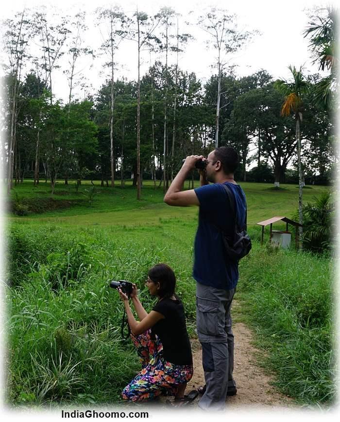 Tata Plantation Trails Coorg review pics