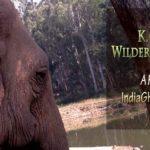 K.Gudi Wilderness Camp – Jungle Lodges & Resorts – REVIEW