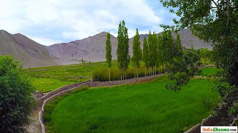Leh Ladakh Village Stok