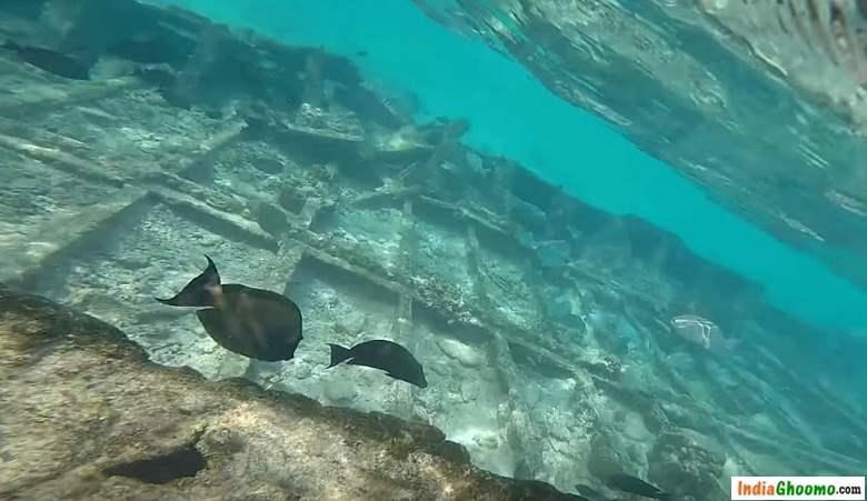 Lakshadweep – Snorkeling at Thinnakara Island