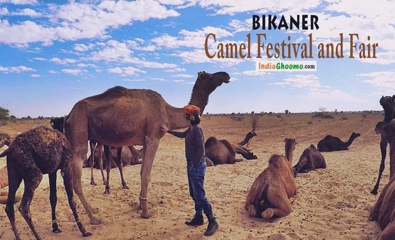 Bikaner Camel Festival and Fair