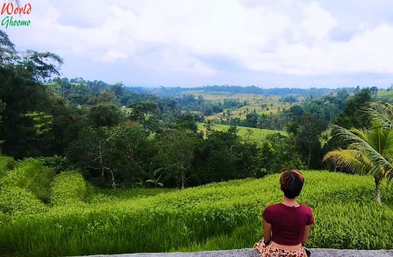 Bali Jatiluwih Rice Terraces view