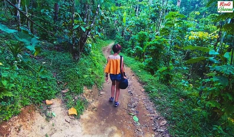 Hike Towards Banyumala Waterfall