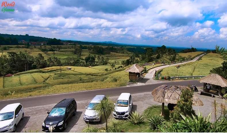 How to rach Jatiluwih Rice Terraces BALI