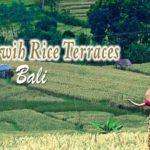 Jatiluwih Rice Terraces Bali Unesco
