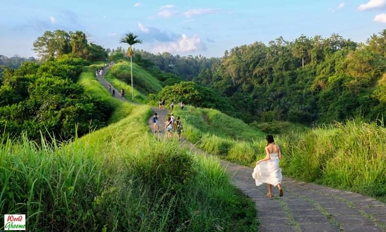 Campuhan Ridge Walk Ubud Bali