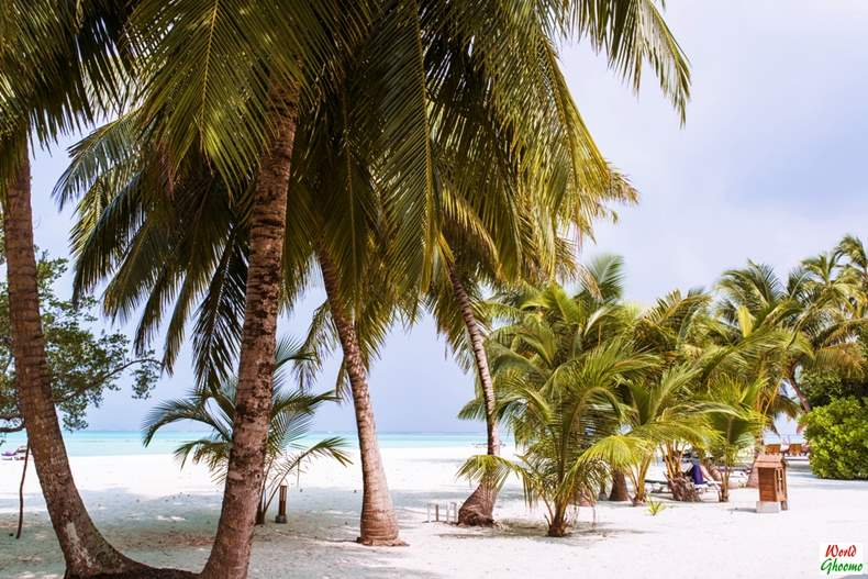 Maldives Travel Guide Things to do