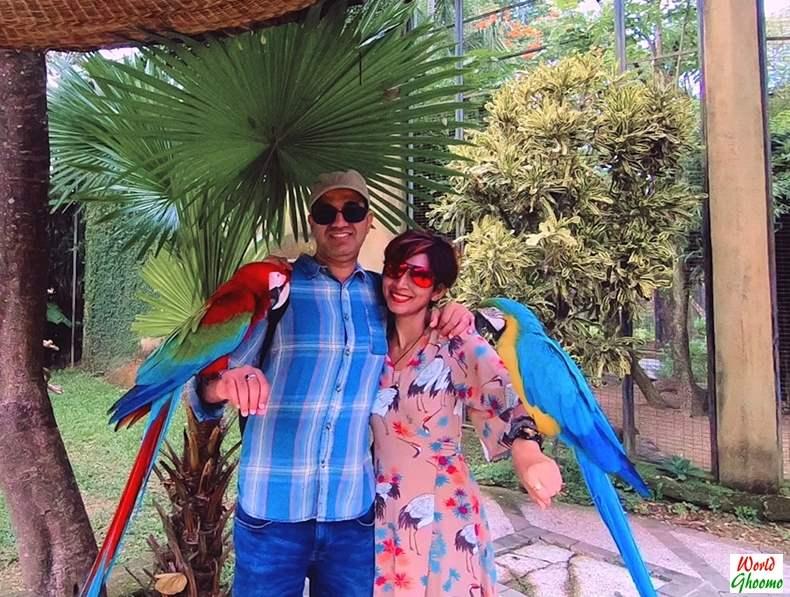 Bali Bird Park Pictures with birds