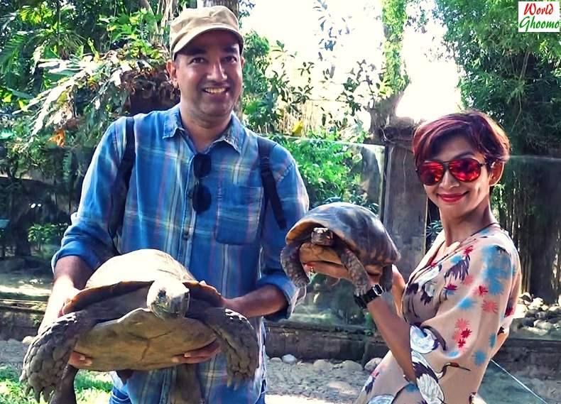 Bali Reptile Park World Ghoomo