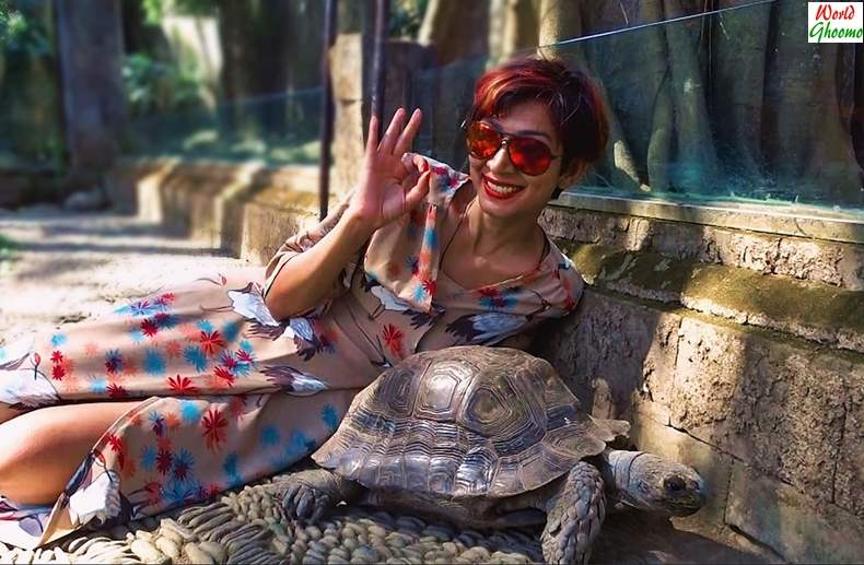 Bali Reptile Park attractions