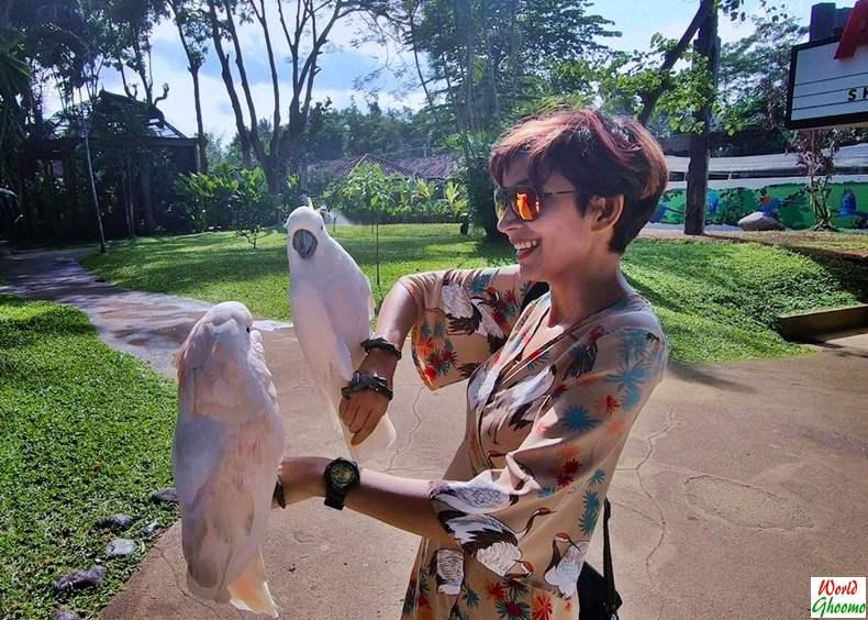 Posing with Birds at Bali Bird Park