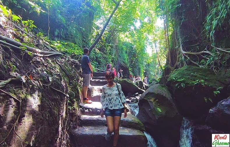 Stream inside Ubud Monkey Forest