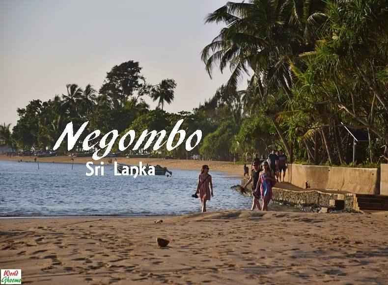 Negombo Sri Lanka Travel Guide