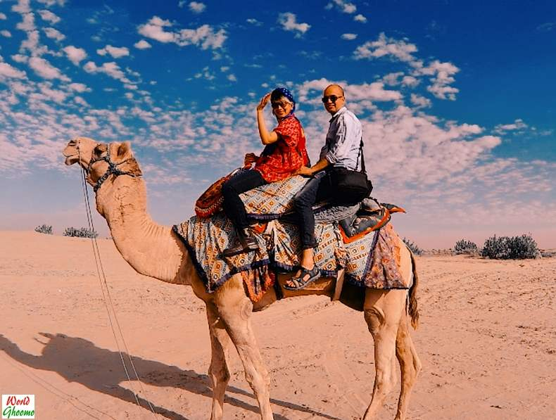 Rajasthan Experiences Camel Ride